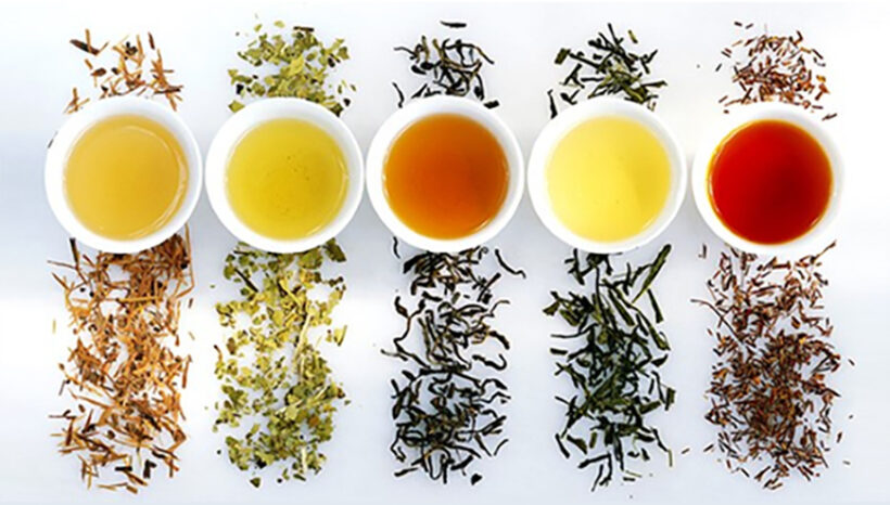 Boost Your Immune System With Tea August 22nd